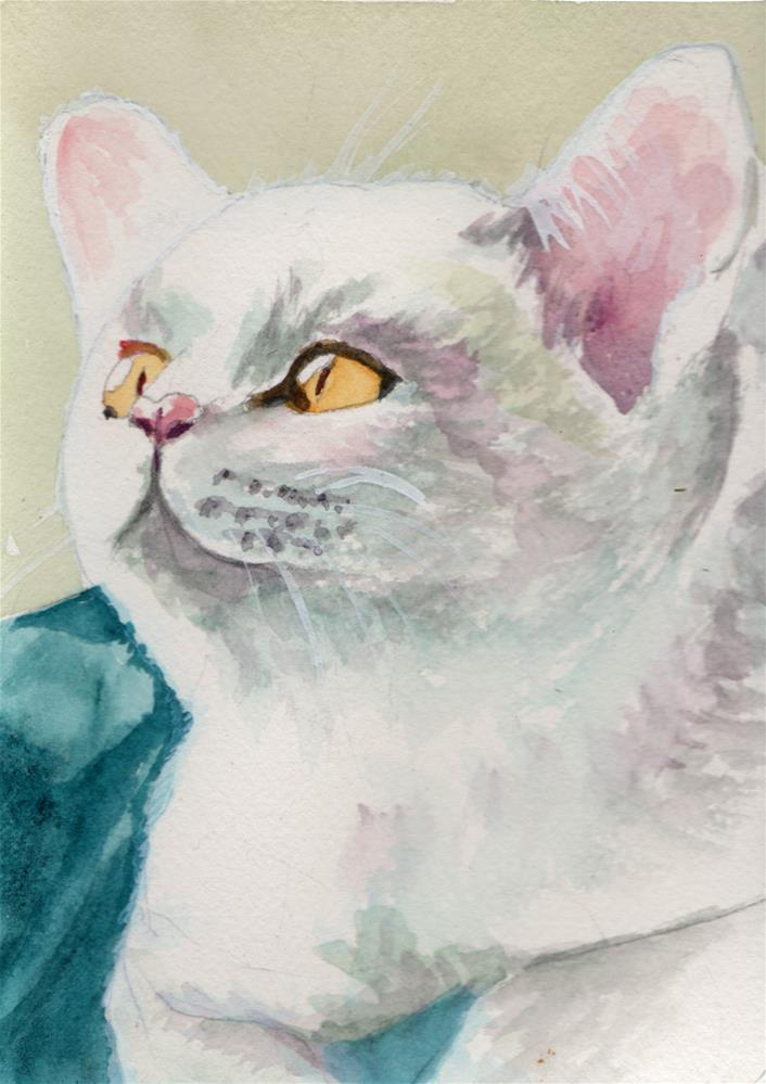 """""""White Cat """" original fine art by Bunny Griffeth"""