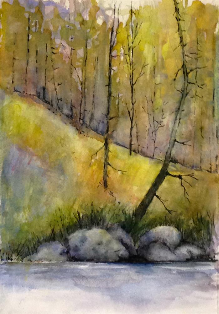 """dead trees by the river bank"" original fine art by Betty Argiros"