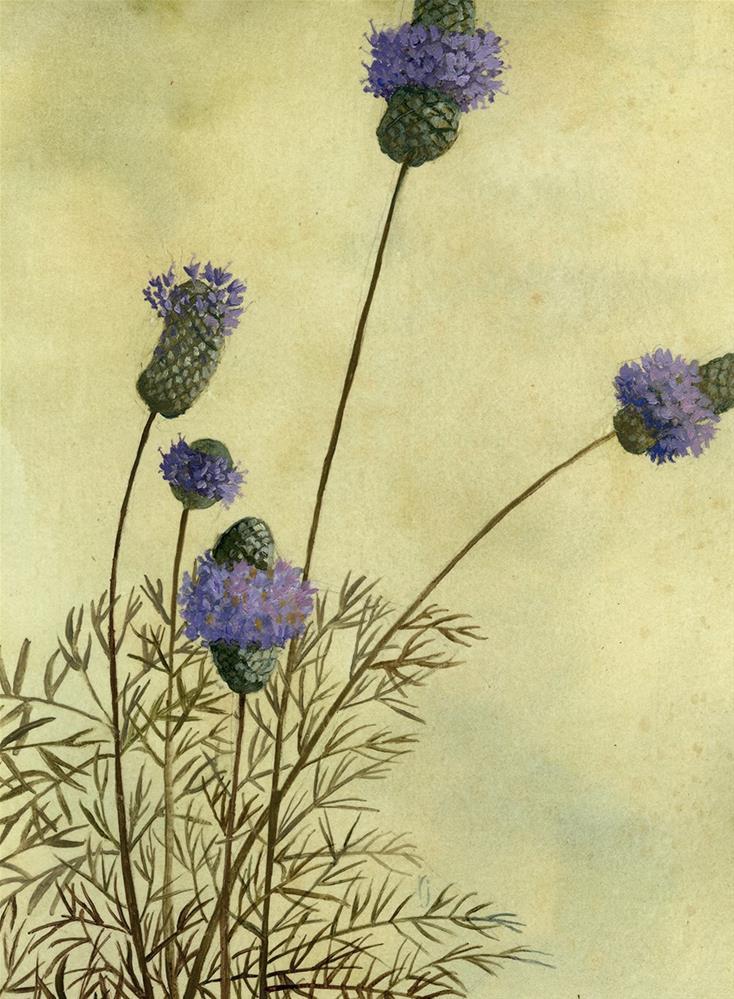 """""""Purple Prairie Clover"""" original fine art by Robyn Jorde"""
