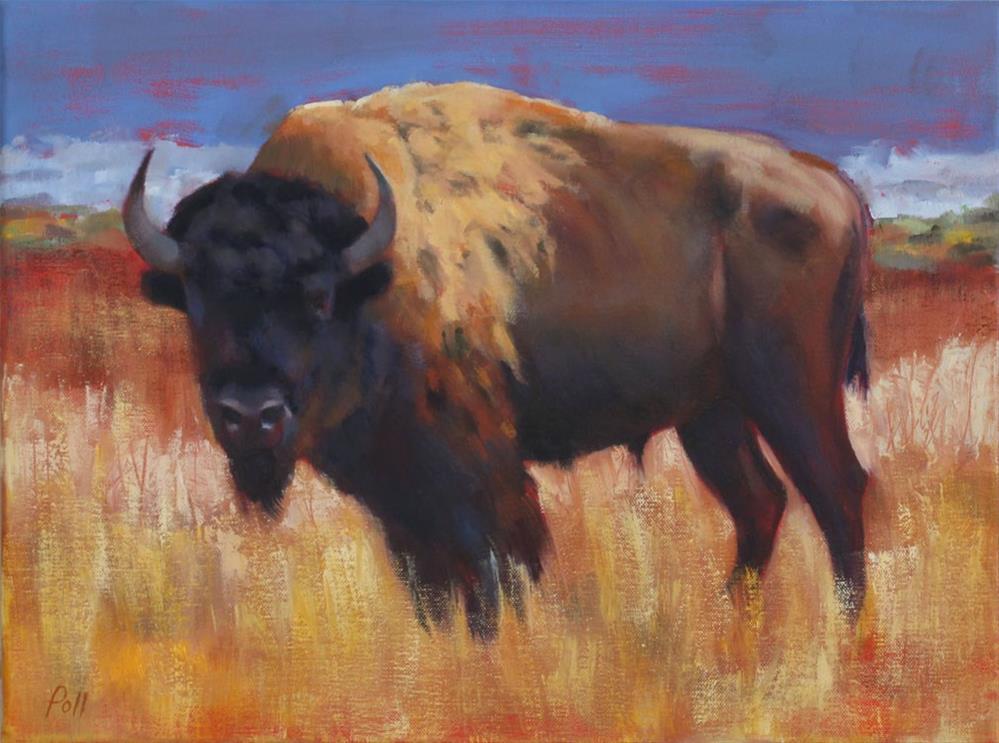 """Bison Bull"" original fine art by Pamela Poll"