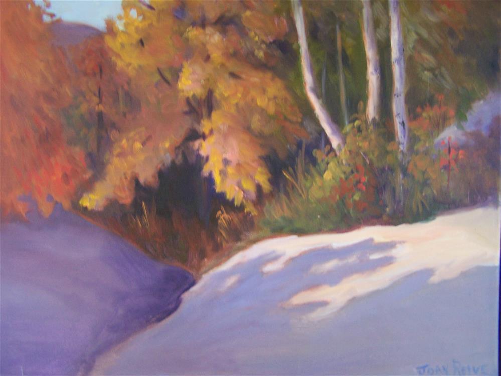 """Fall Splendor"" original fine art by Joan Reive"
