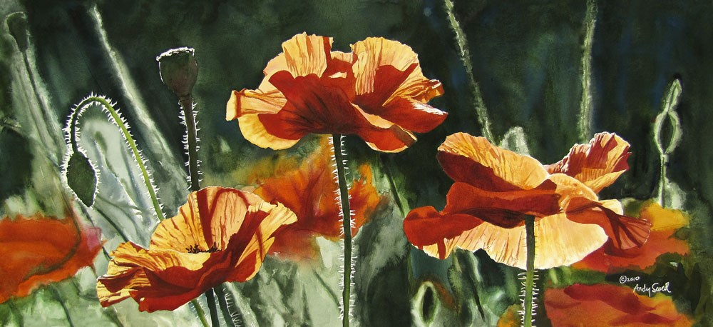 """Poppy Trio"" original fine art by Andy Sewell"