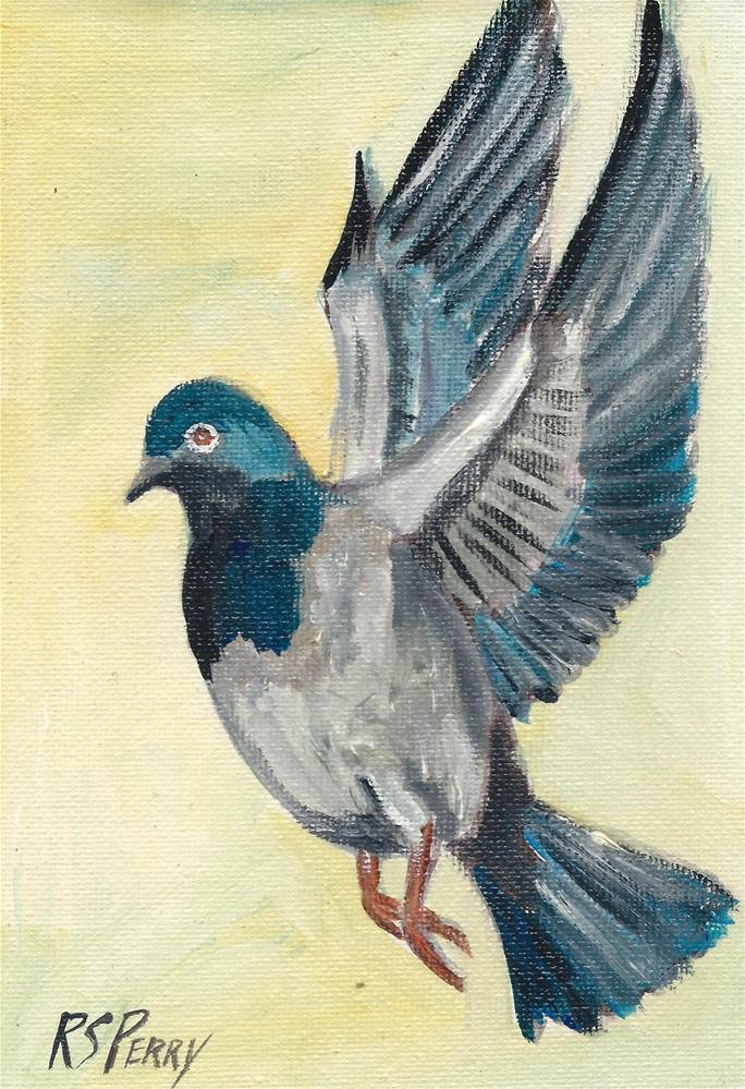 """""""Pigeon 2"""" original fine art by R. S. Perry"""