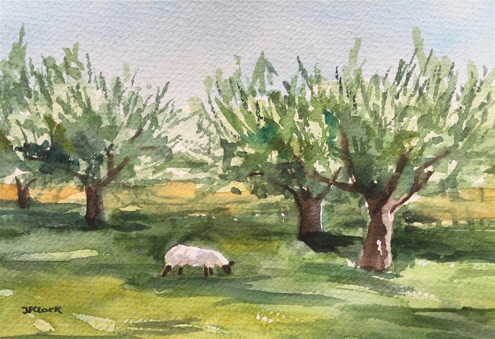 """Sheep in the Orchard"" original fine art by Judith Freeman Clark"