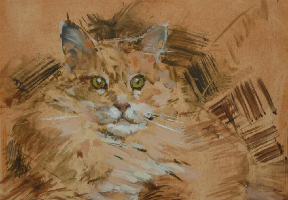 """Cat Study"" original fine art by Ron Ferkol"