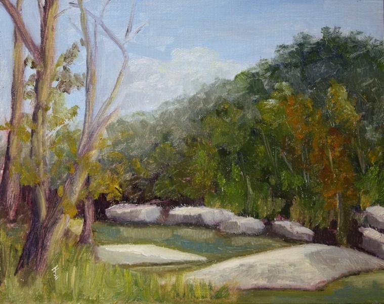 """Barton Creek"" original fine art by Jane Frederick"
