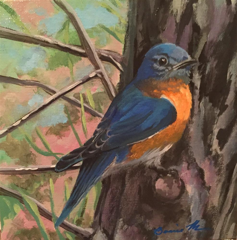 """""""Eastern Bluebird"""" original fine art by Bonnie Masdeu"""