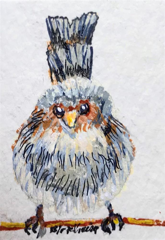 """""""Fairy Wren"""" original fine art by Linda Blondheim"""
