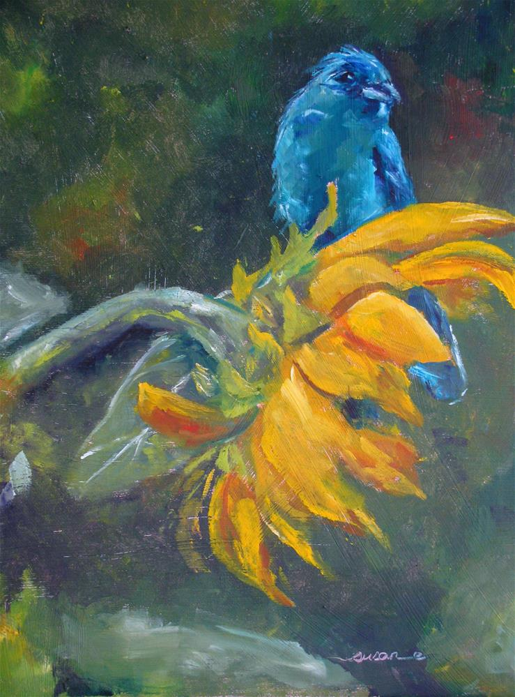 """Indigo Bunting"" original fine art by Susan Elizabeth Jones"