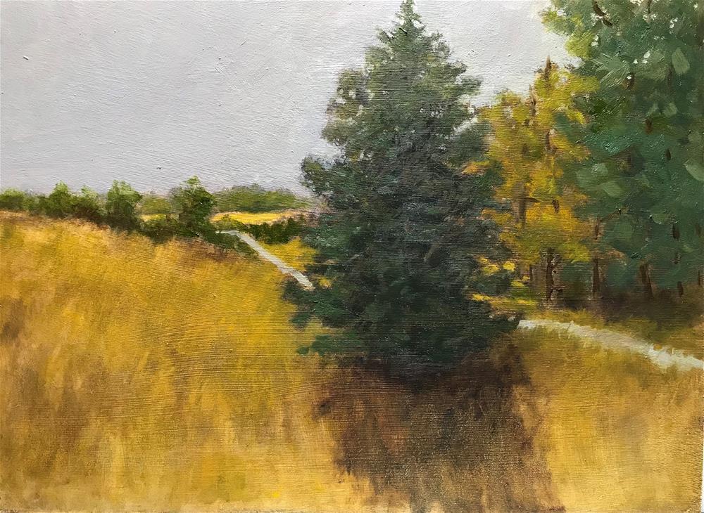 """Lone pine tree"" original fine art by Betty Argiros"