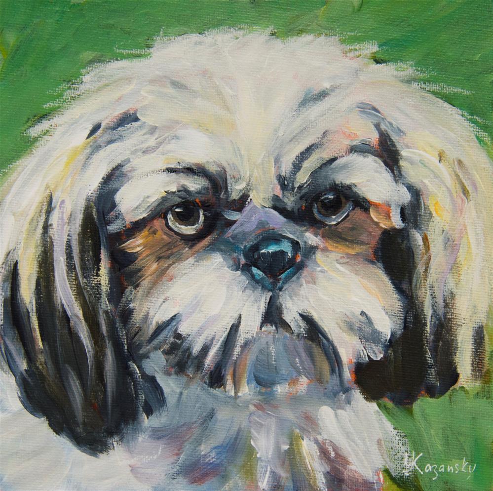 """""""Maltese Puppy"""" original fine art by Yulia Kazansky"""