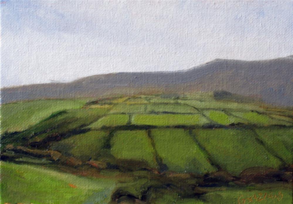 """""""fields of green"""" original fine art by Dan Graziano"""