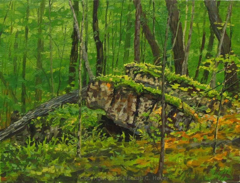 """""""Deep Woods"""" original fine art by Hannah C. Heyer"""