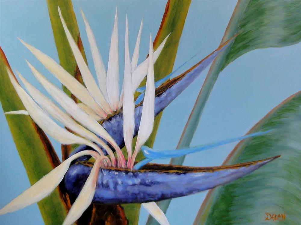 """White Bird Of Paradise Commission"" original fine art by Dalan Wells"