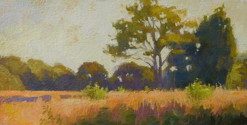 """""""Meadow near sunset"""" original fine art by Kathy Weber"""