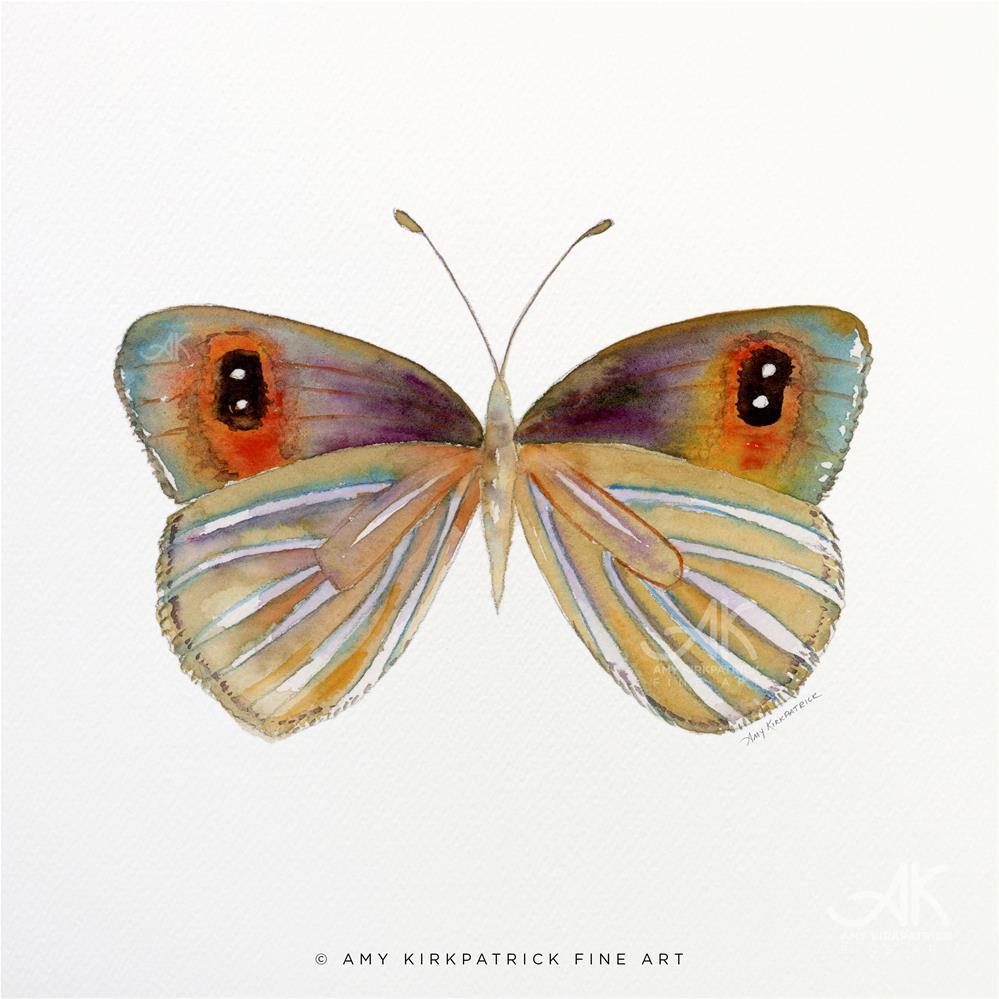 """""""#24 Argyrophenga Butterfly #0333"""" original fine art by Amy Kirkpatrick"""
