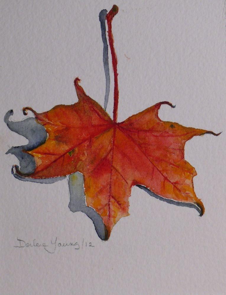 """570 Red Maple Leaf"" original fine art by Darlene Young"
