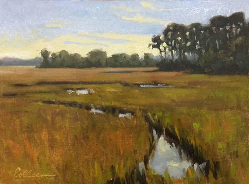"""Tidal Creek"" original fine art by Colleen Parker"