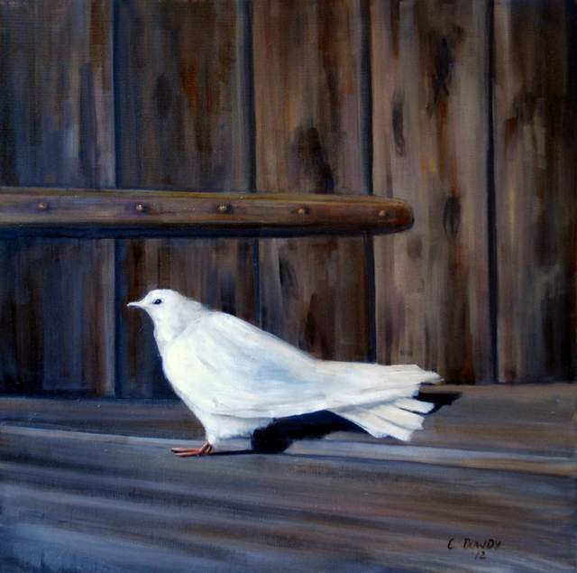"""Dove and Barnwood"" original fine art by Christina Dowdy"