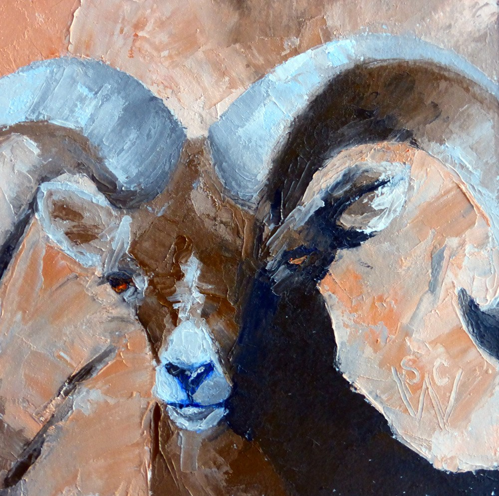 """Bighorn Sheep"" original fine art by Susan Woodward"