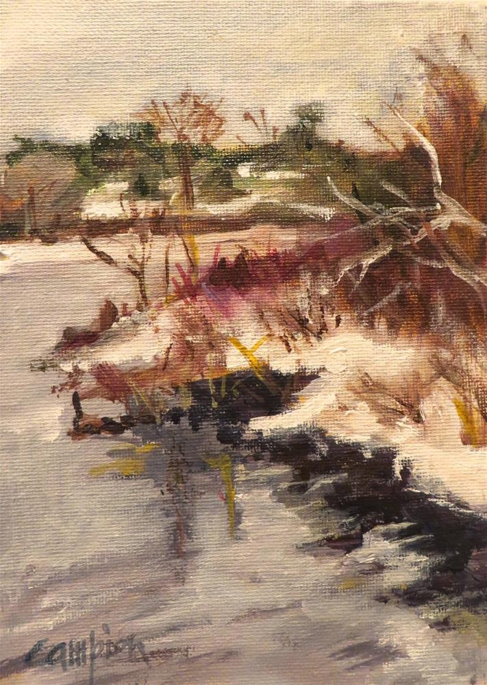 """567 Winter in Plymouth, Massachusetts"" original fine art by Diane Campion"