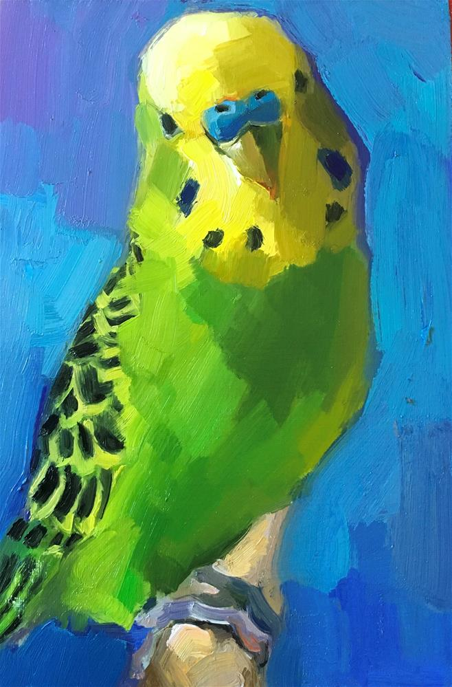 """Budgie54_oil"" original fine art by Katya Minkina"