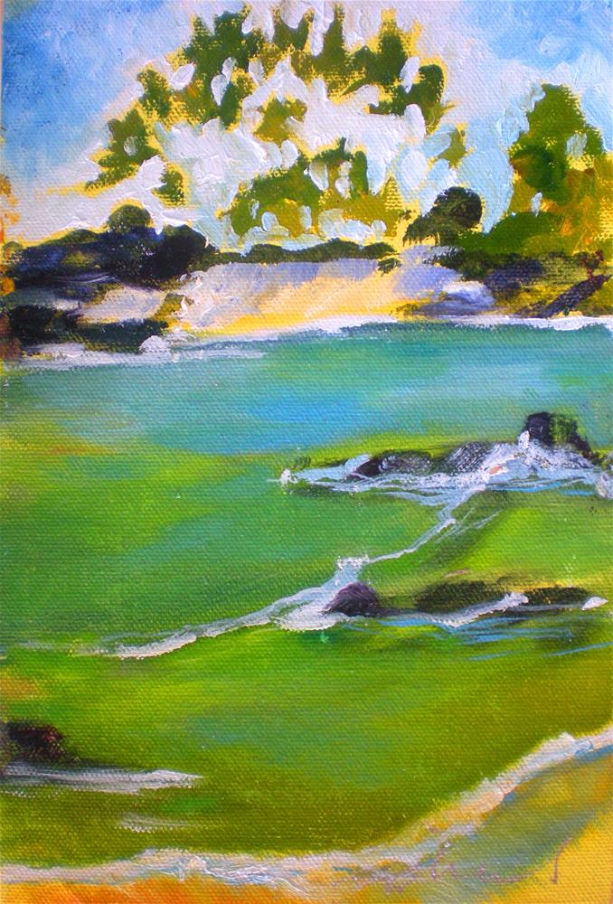 """Mahai'ula North Beach 141213s"" original fine art by richard rochkovsky"