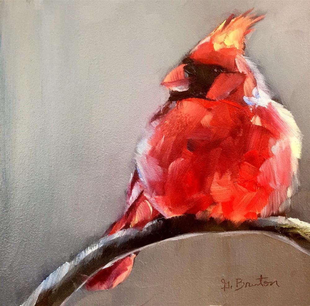 """""""Fluffy Cardinal"""" original fine art by Gary Bruton"""