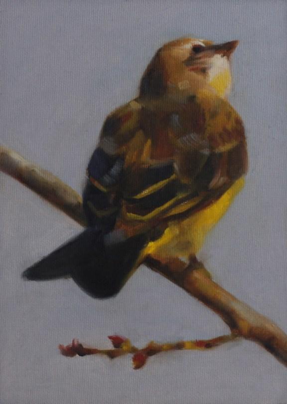 """Looking Up"" original fine art by Pamela Poll"