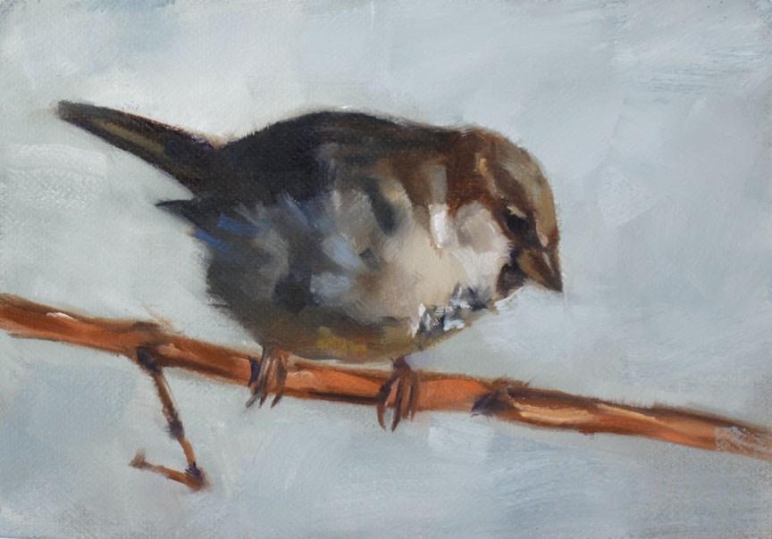 """Sparrow on a Grapevine"" original fine art by Pamela Poll"