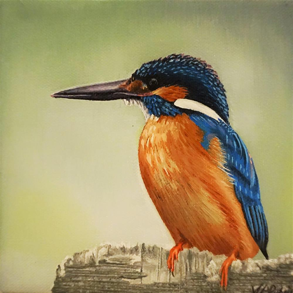 """Kingfisher The Bird Challenge"" original fine art by Catherine Al-Rubaie"