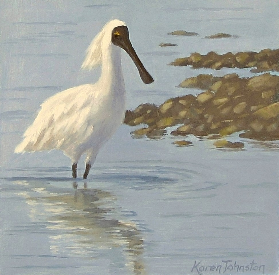"""Spoonbill"" original fine art by Karen Johnston"