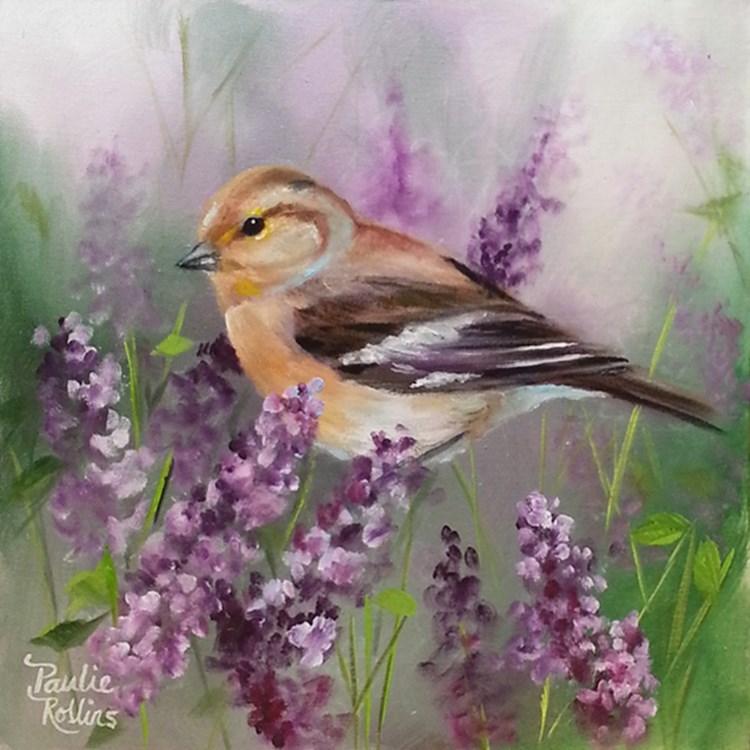 """""""Lavender Patch"""" original fine art by Paulie Rollins"""
