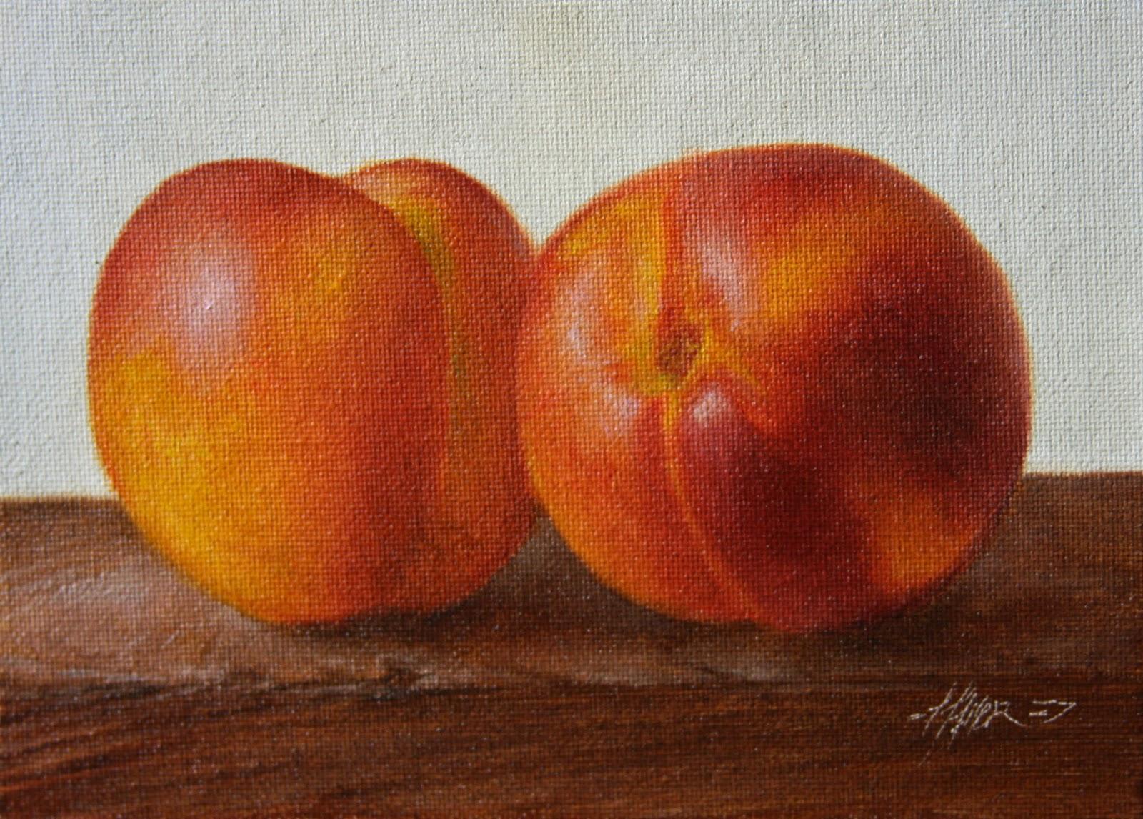 """Nectarines"" original fine art by Jonathan Aller"