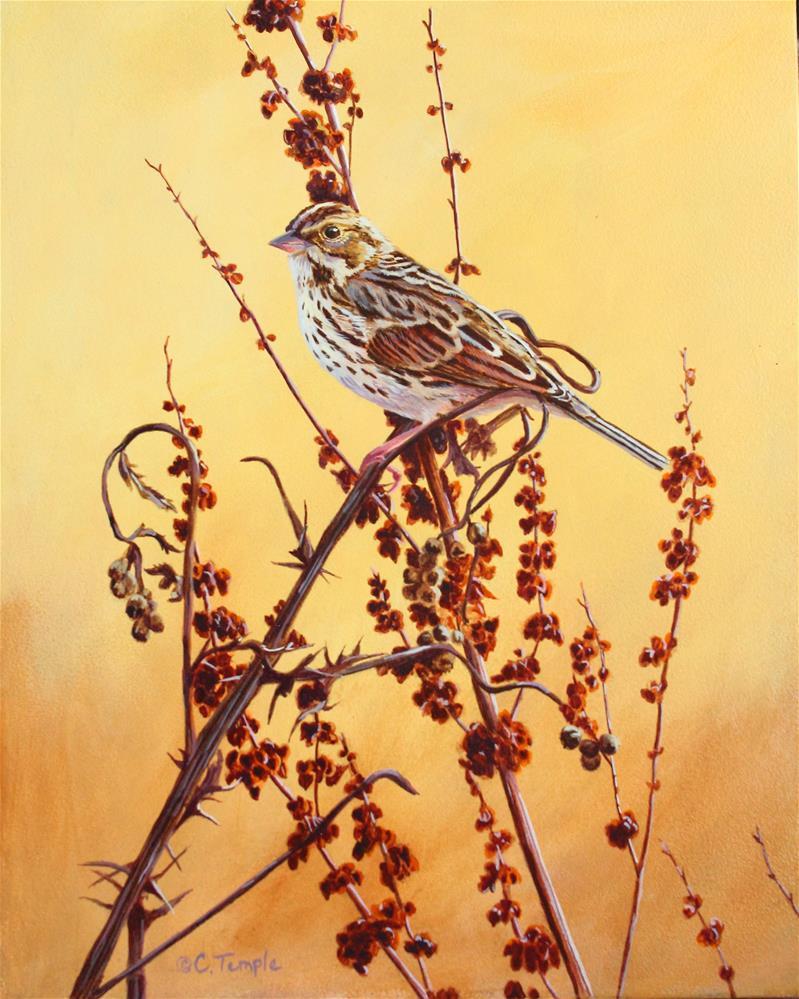 """Savannah Sunrise"" original fine art by Catherine Temple"