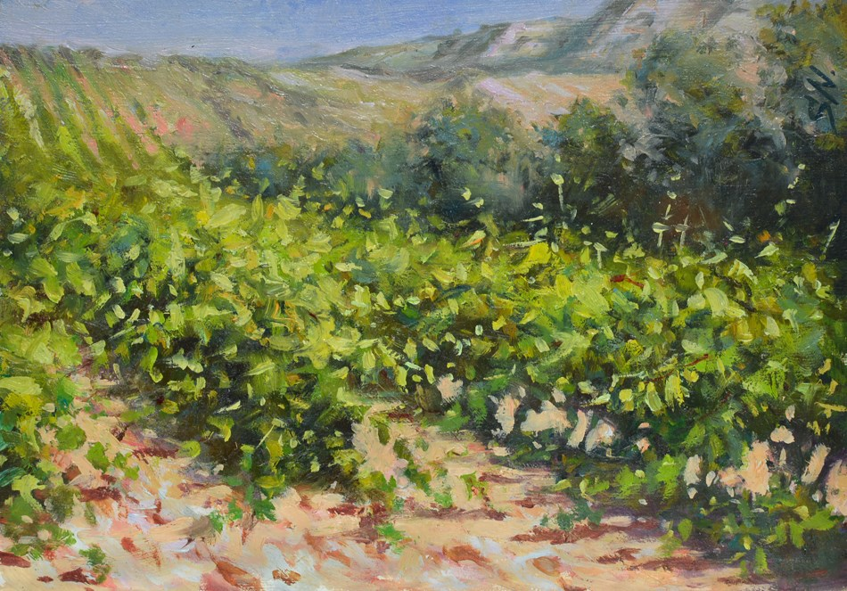 """Hillside vineyard - Tuscany, Countryside scene of Italy, landscape oil painting"" original fine art by Nick Sarazan"