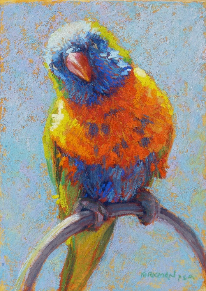 """Lorikeet"" original fine art by Rita Kirkman"
