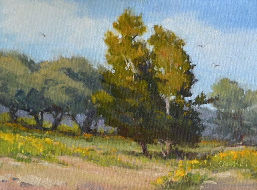 """""""Rolling Meadow - Kerrville Outdoor Painting Event"""" original fine art by Laurel Daniel"""