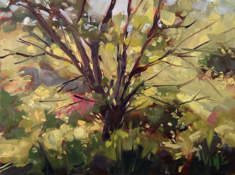 """#192 East Side Tree"" original fine art by Patty Voje"