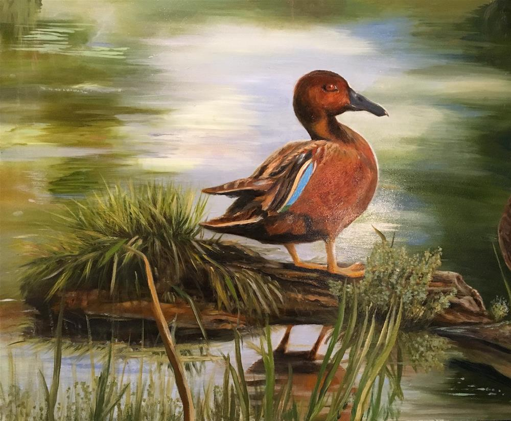 """Cinnamon Teal"" original fine art by Karen Stitt"
