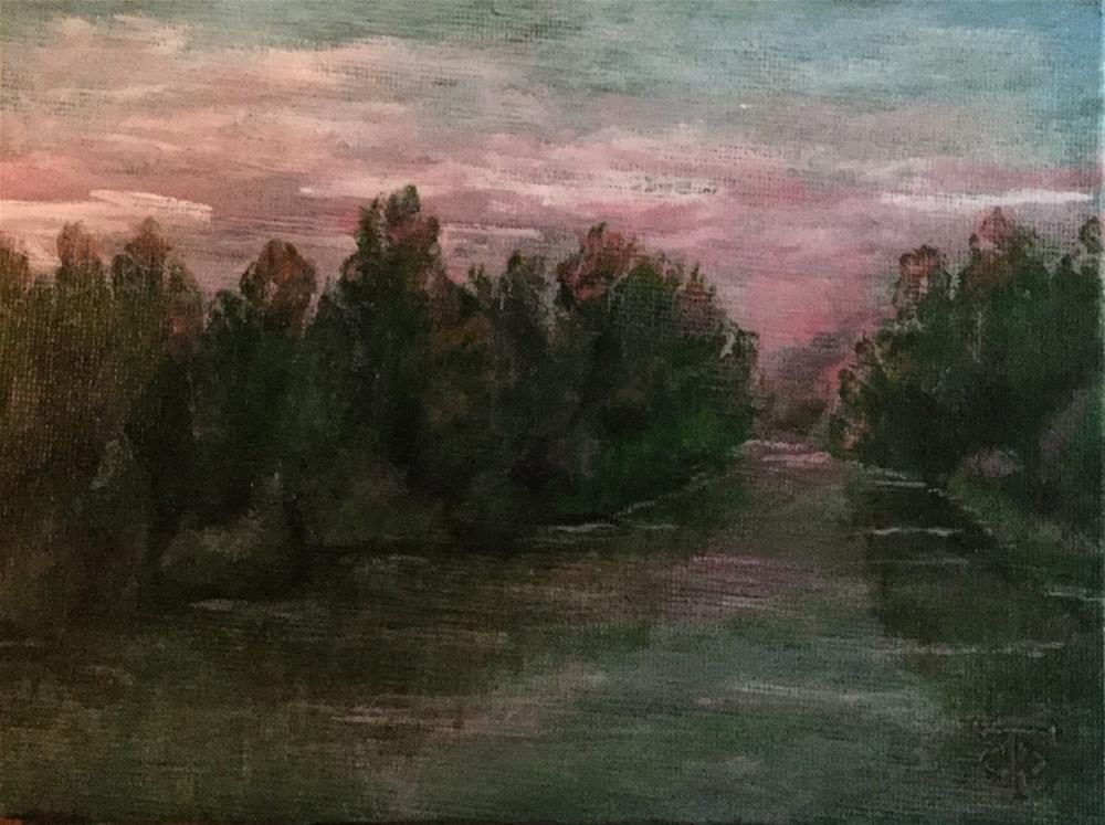 """""""Ogeechee Pink"""" original fine art by T.C. Poole"""