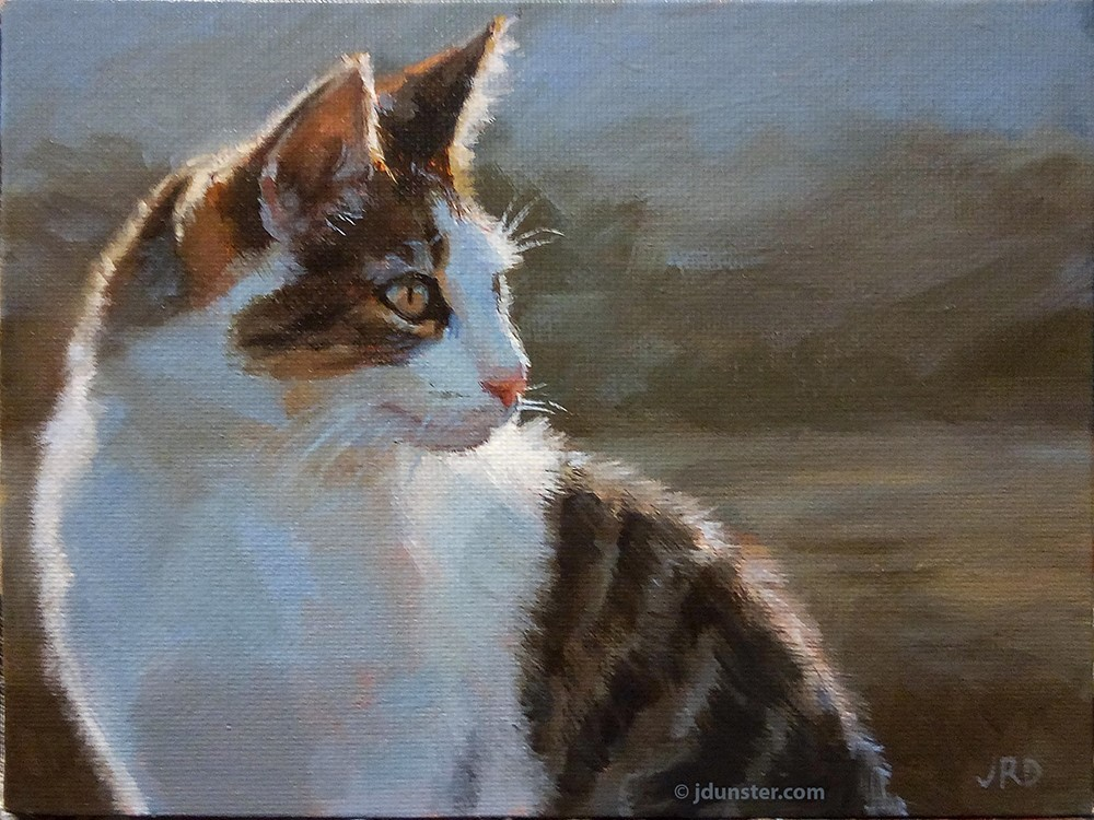 """Morning Kitty"" original fine art by J. Dunster"