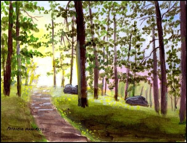 """Colorful Woods"" original fine art by Patricia Ann Rizzo"
