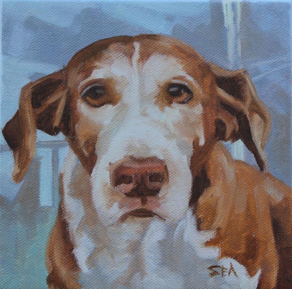 """Kayla's dog"" original fine art by Susan Ashmore"