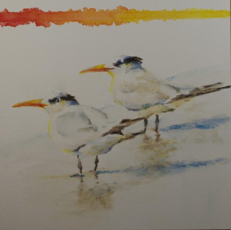 """Royal Terns"" original fine art by Sue Churchgrant"