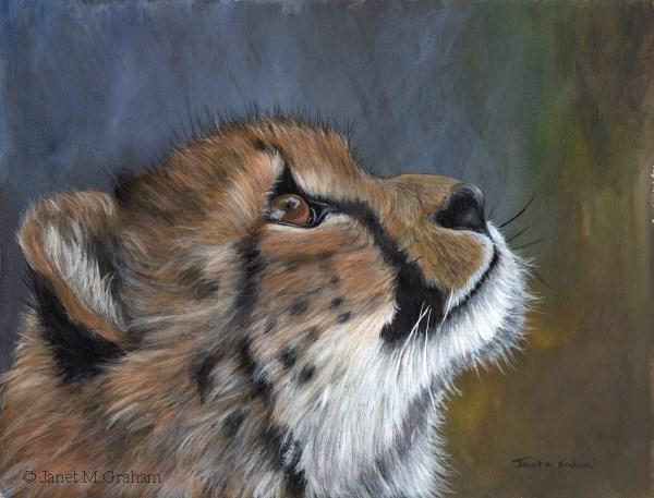 """Cheetah Cub"" original fine art by Janet Graham"