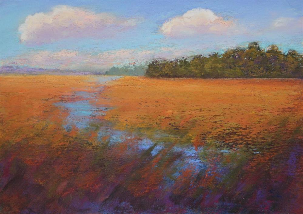 """Plaid Marsh"" original fine art by Sharon Lewis"