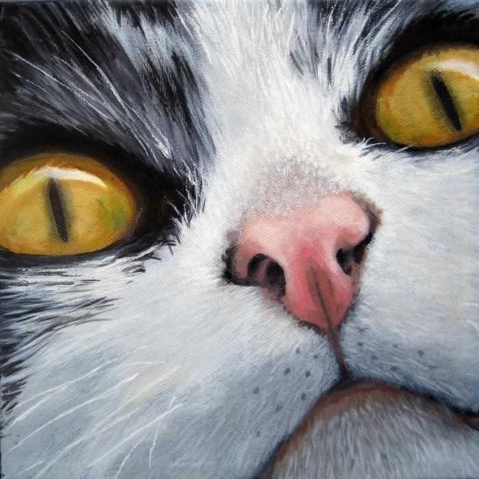 """Cat Eyes animal cat portrait realism"" original fine art by Linda Apple"