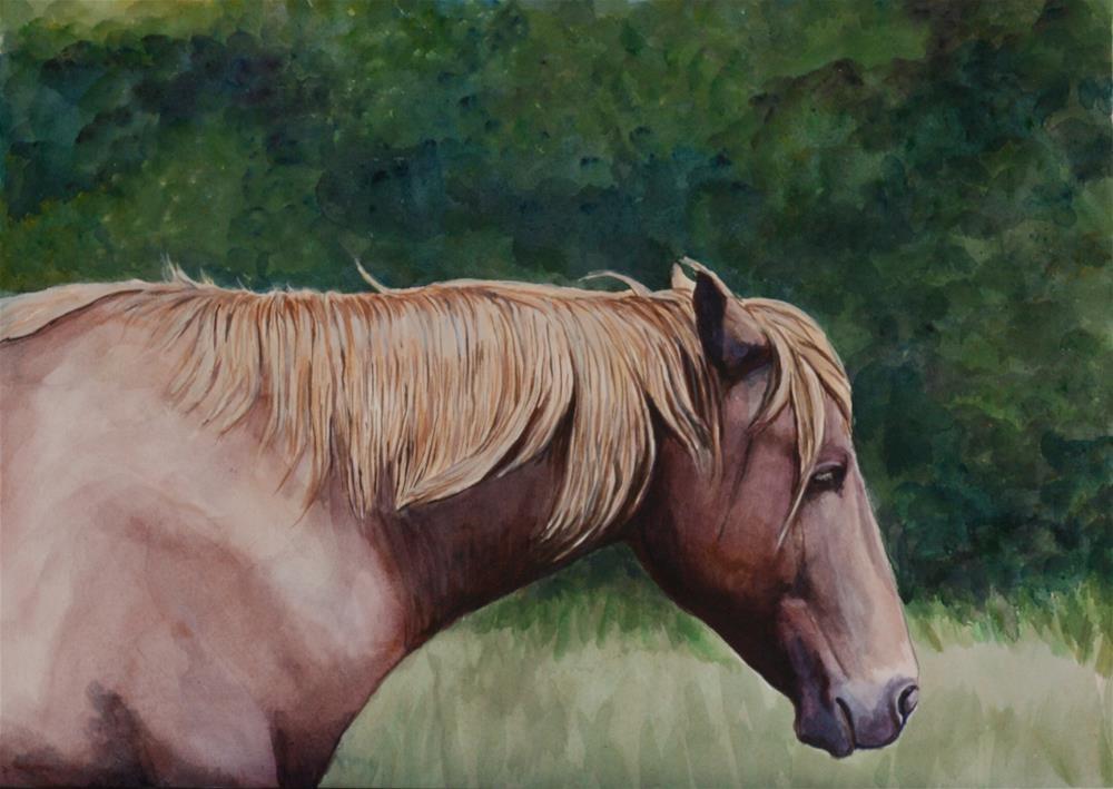 """Pony"" original fine art by Charlotte Yealey"