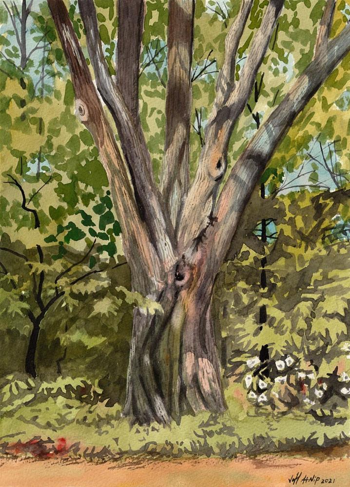 """Dixon Tree"" original fine art by Jeff Atnip"